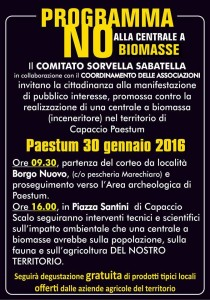 nobiomass2
